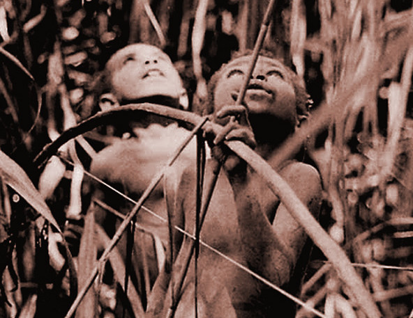 Gwe, Young Man of New Guinea: cover photo by Arnold Perey, anthropologist and Aesthetic Realism consultant
